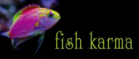 BlogArtFishKarma